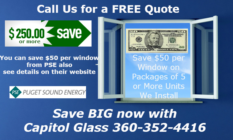 Window Savings2